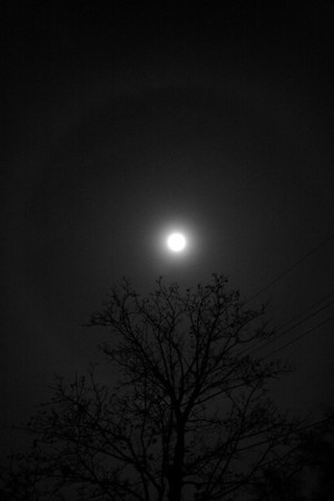 Moon...and a huge ring...11/13/2008