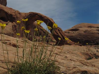 Moab Memorial Day '11