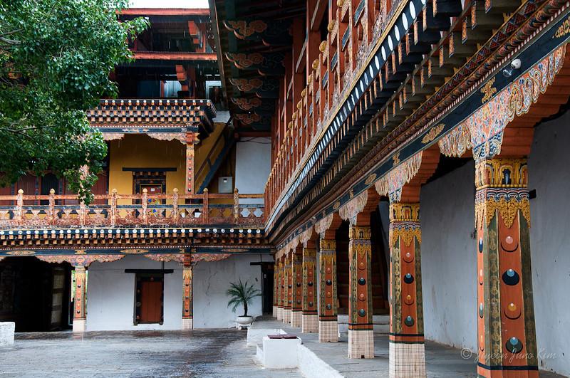 Bhutan-Punakha-8326.jpg