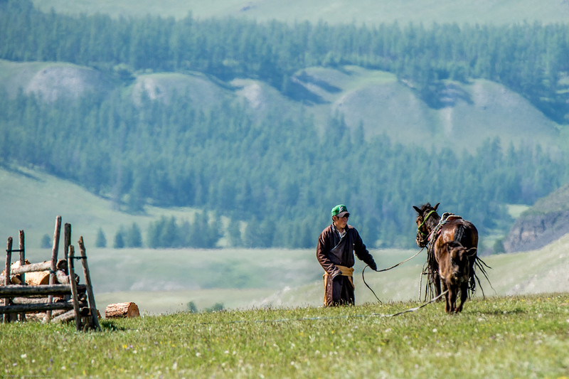 Mongolsko (206 of 496).jpg