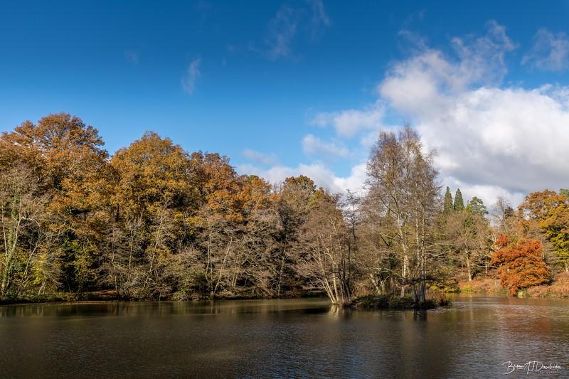 Wakehurst_Autumn-6132.jpg