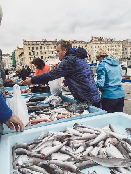 marseille fish market 13.jpg