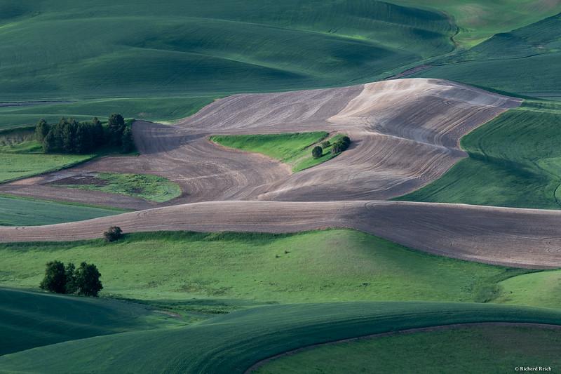 Steptoe Butte-4440.jpg