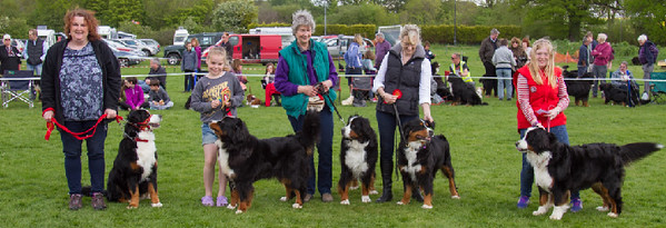 2016-SpringGardenParty-WaggyTails.jpg