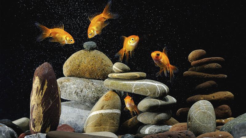 stones_1920x1080_34.jpg