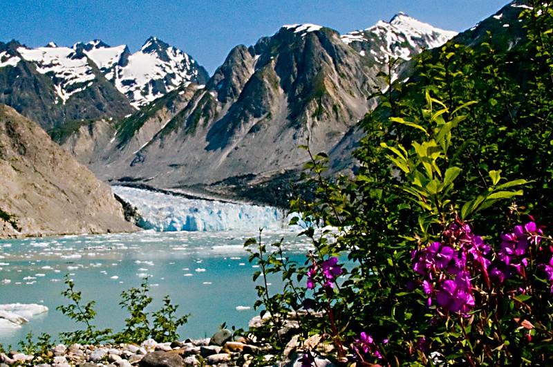 McBride Glacier7.jpg