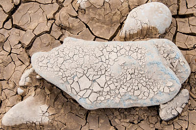 Grounded - Rocks, Soil