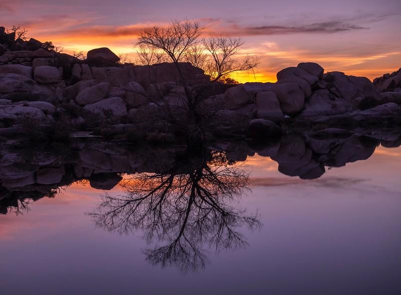 Joshua Tree_Barker Dam-4.jpg