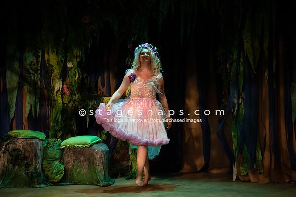 Midsummer Night's Dream DressTuesday
