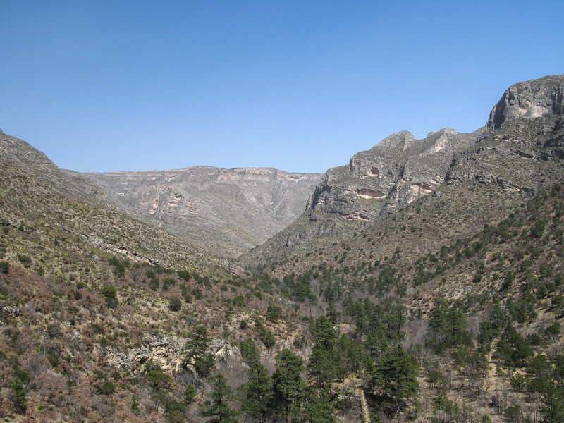 Guadalupe McKittrick Canyon reef formations