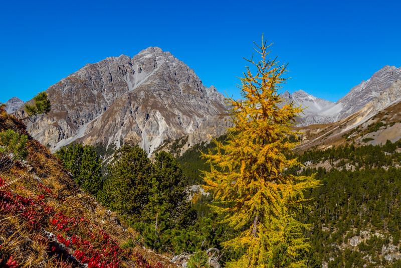 Auf dem Weg vom Ofenpass zur Alp Mora: Blick auf den Piz Nair