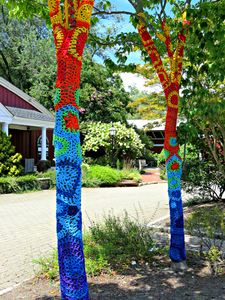 yarn bombed trees at the Long Island Museum in Stony Brook