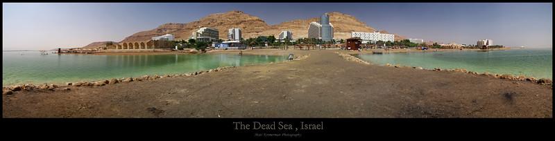 50X195 dead sea.jpg