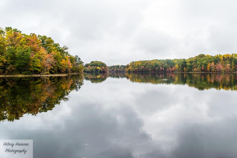 Burke Lake 3