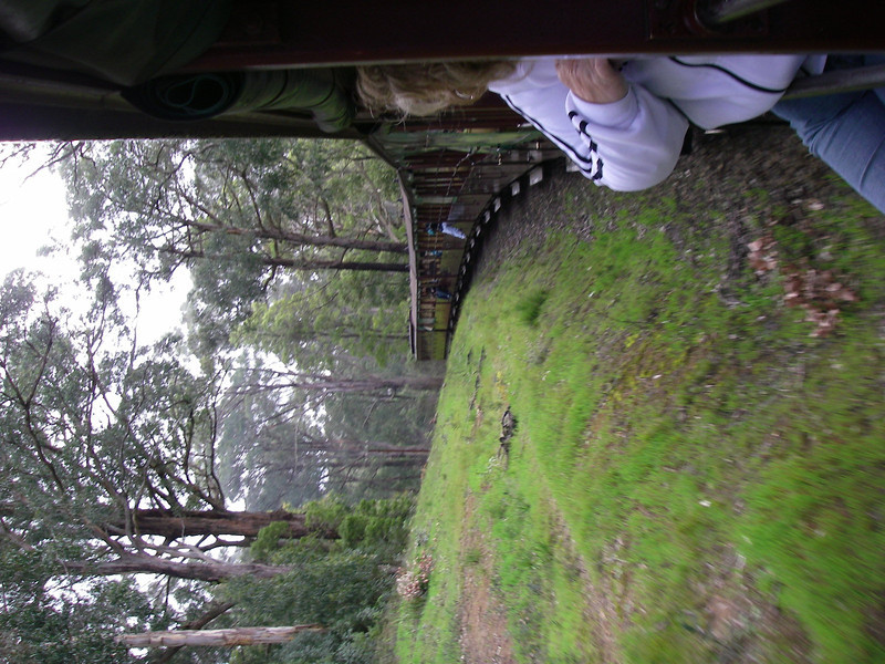 Puffing Billy and Phillip Island 056.JPG