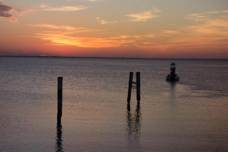 Tampa Landscapes-03406.jpg