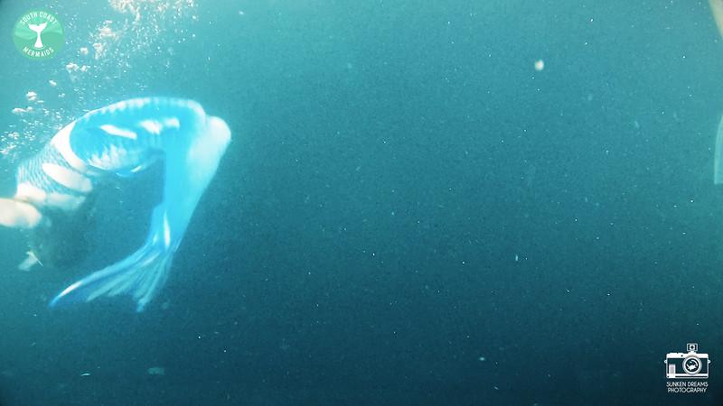 Mermaid Re Sequence.00_25_49_29.Still174.jpg