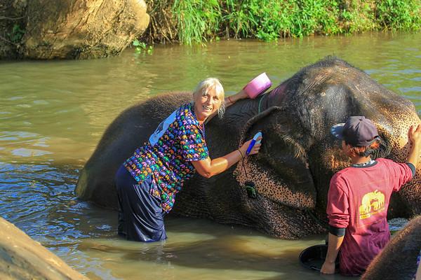 KANTA Elephant Sanctuary, Chiang Rai, Thailand - January, 2018