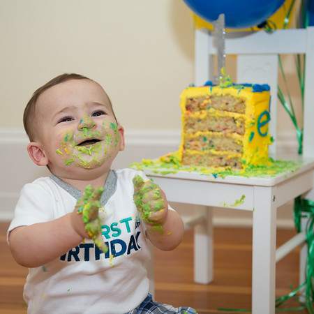 The Rest of Dante's First Cake Smash