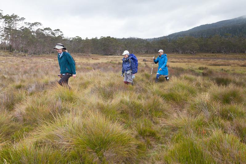 Tasmania_2015_169.jpg