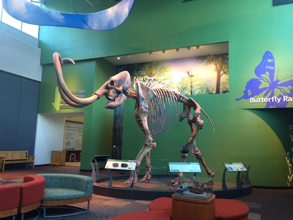 Florida Museum of History