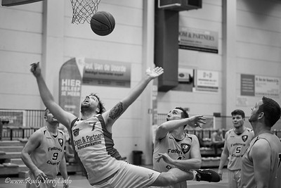 Basket_2019