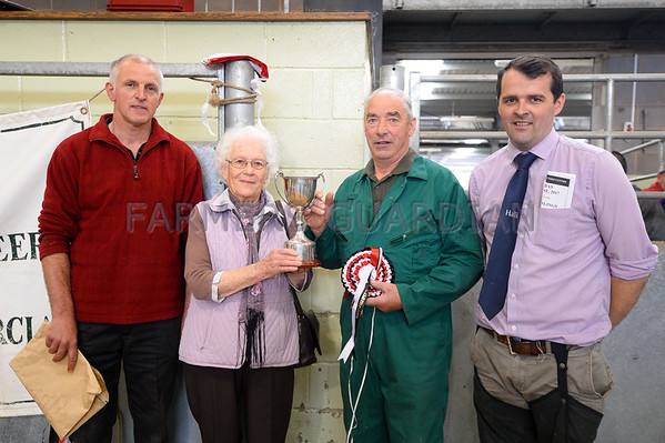 Shrewsbury Auction Mart Dairy Sale June 2017