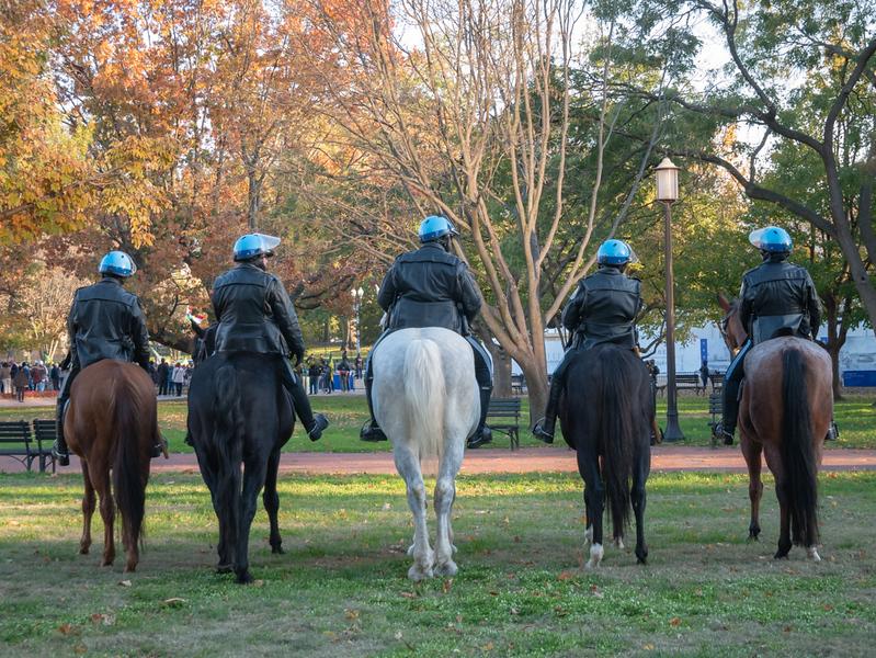 Policehorses.jpg