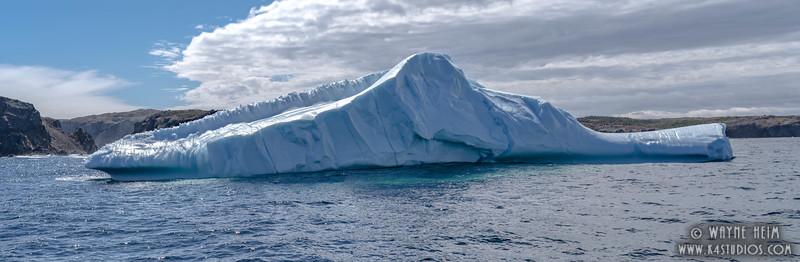 Iceberg 51   Photography by Wayne Heim