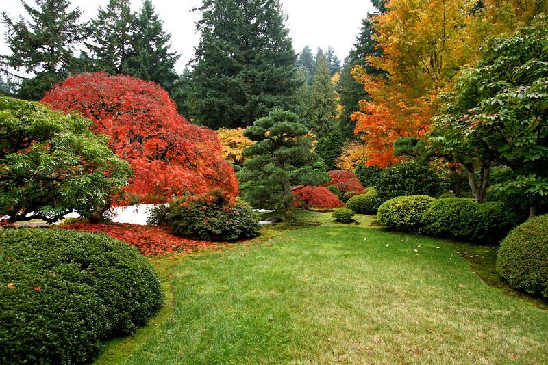 Portland Japanese Garden  11-11-11  3550.jpg