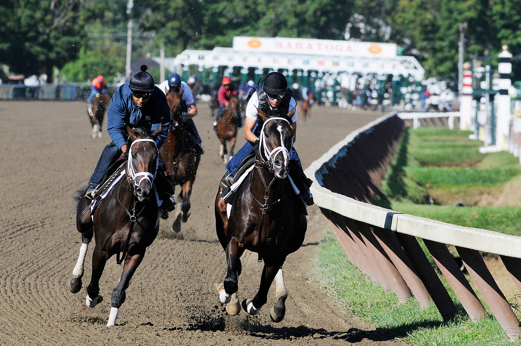 . Johnny Velazquez breezed Verrazano on Saratoga Race Course Sunday morning, trained by Todd Pletcher, set to run in Travers Stakes.Photo Erica Miller/The Saratogian 8/11/13 spt_Verrazano2