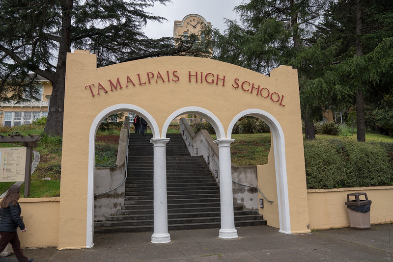 Tam and Redwood Walkout (52 of 91).jpg