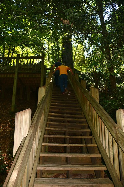 stairs to Black Creek, june 8, 2016 094 copy edited.jpg
