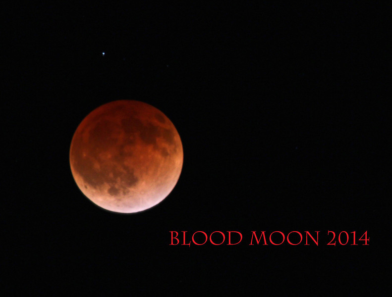Blood moon2_9065.jpg