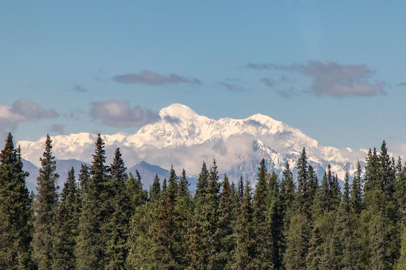 Alaska 2015 - Denali -  072015-1635.jpg