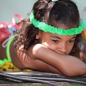 Carivibe Parade 2011