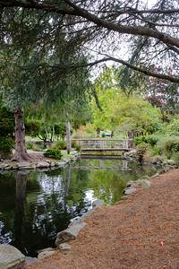 Point Defiance Park Gardens October 2016