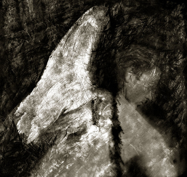 Wing of Life Duotone.jpg