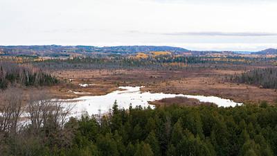 Windy Ridge Conservation Area 2020