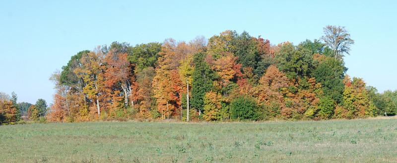 Fall Panorama.jpg