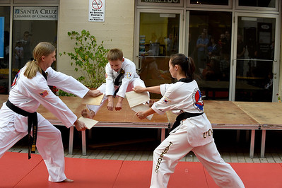 Tae Kwon Do Demonstration 6-20-14