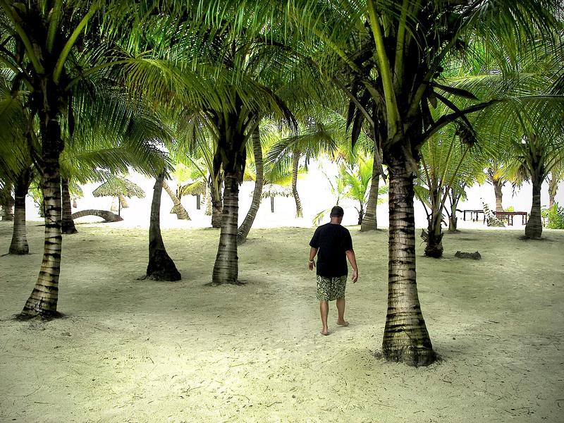 Man walking through palm trees on a tropical island.