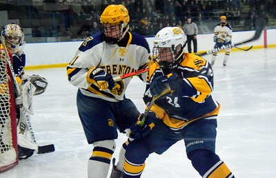 HS Sports - Trenton vs. Saline 20 Regional Hockey