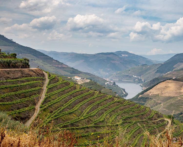 1805-Douro-1791.jpg