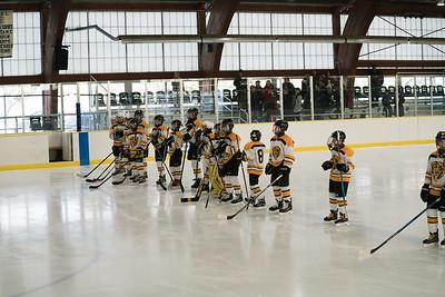 Bruins Hockey - Mid March 2017