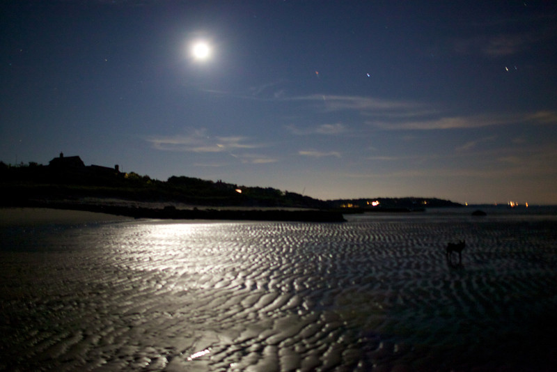 Cape Cod 2011 2.jpg