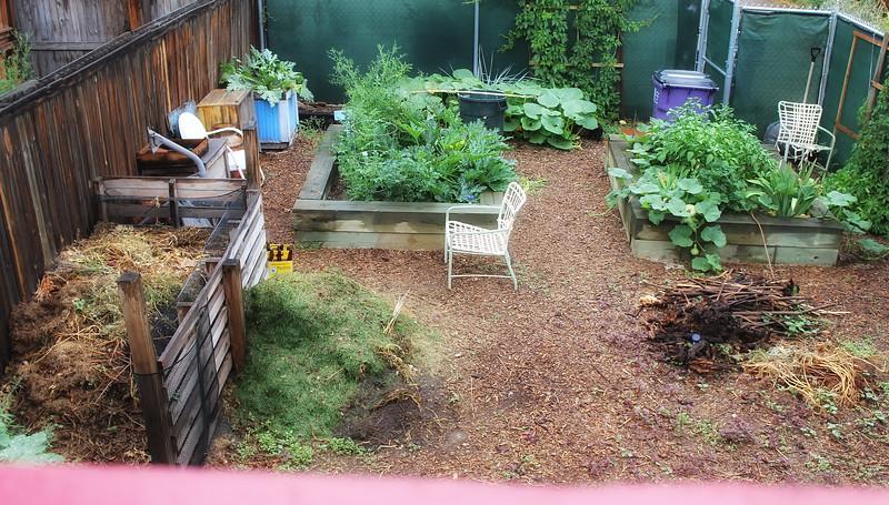 The lovely yard.jpg