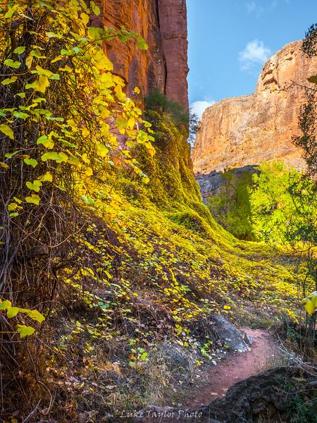 Arizona-128.jpg