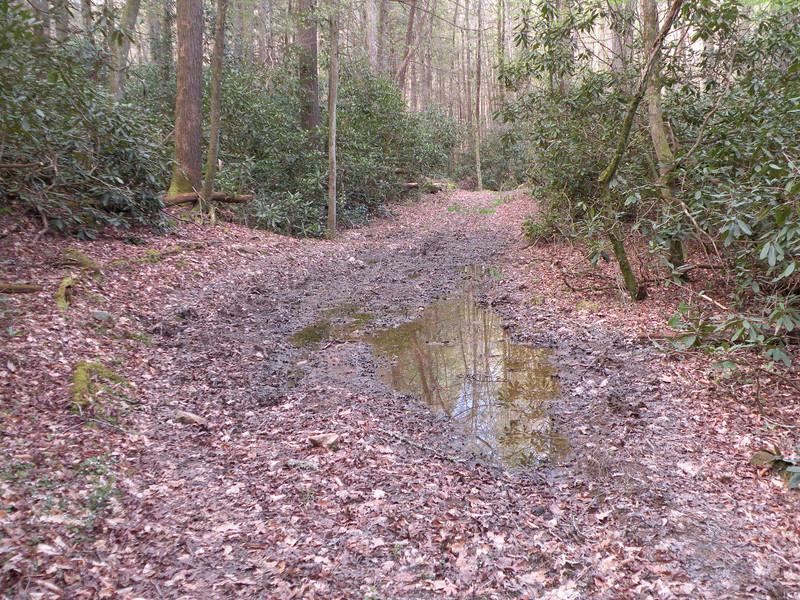 Cane Creek 076.jpg