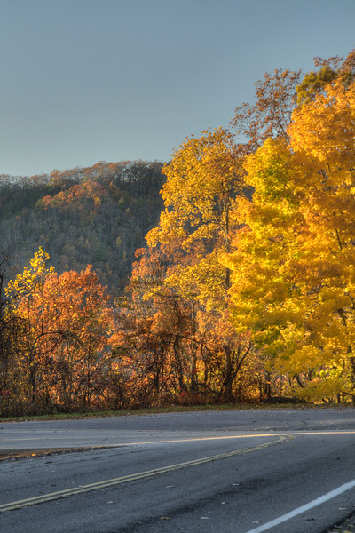 Beautiful, vibrant colors decorate Highway 421 in Shady Valley, VA on Friday, November 1, 2013. Copyright 2013 Jason Barnette